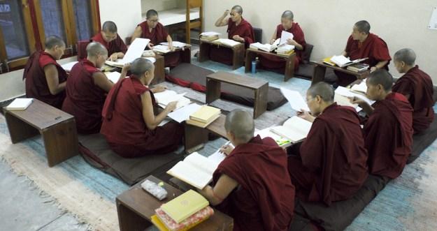 Tibetan Nuns, Tibetan Nuns Project, Tibetan education, Tibetan culture, what Tibetan Buddhist nuns learn