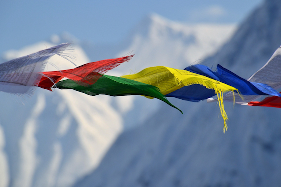tibetan prayer flags, Tibetan Nuns Project, Tibetan nun's story, Tibet, Tibetan, prayer flags, snow mountains