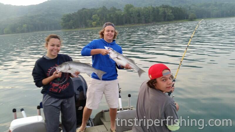 Tennessee Striper Fishing Guide Charter Services Captn Jay Lake Cherokee Norris Lake Watts Bar