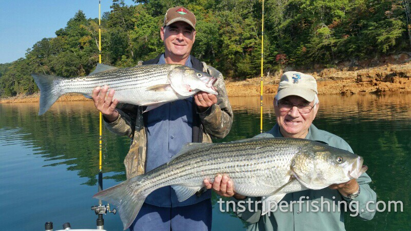 Amazing fishing trip with Captin' Jay Gilardot on Lake Cherokee and Watts Bar Tennessee, fishing guided tour catches awesome fish, what a day!