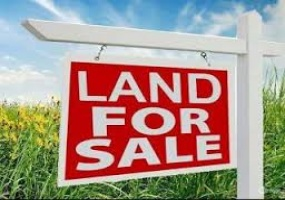 land for sale in trinidad and tobago
