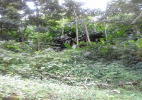 land for sale couva trinidad