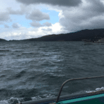 果たして出航できるのか!?アカモクの生息状況は!?海底調査を実施しました。