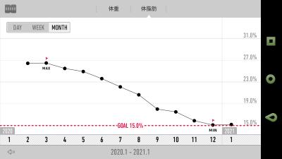 Recstyle体脂肪率グラフ
