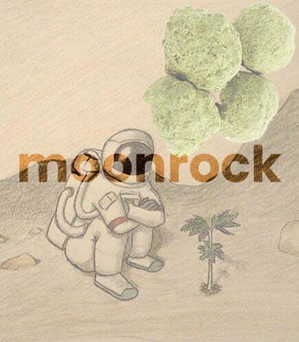 marijuana moon rocks for sale 1 Toastedexotics