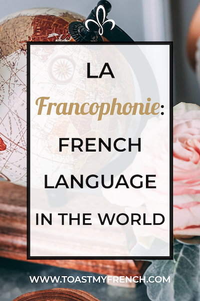 francophonie the french language in the world pinterest