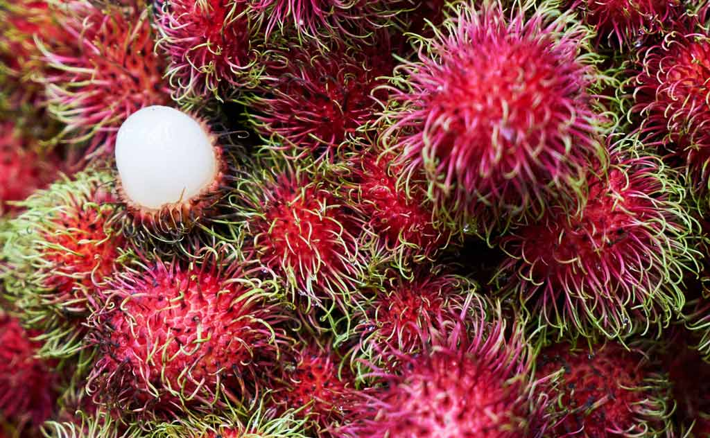 Rambutan – Thailand's Most Popular Fruit Overall (with Thai people and foreigners)