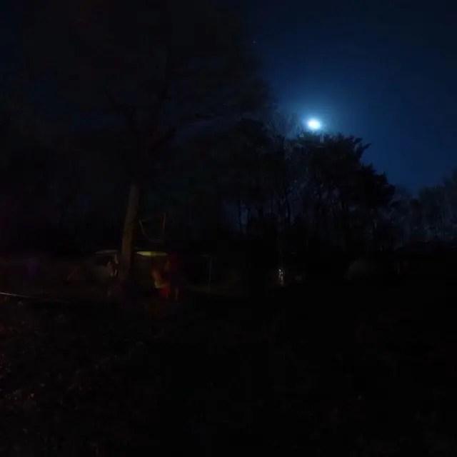 夜のわんきゃん全景。