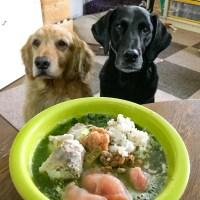 手作りわんこご飯と発酵野菜