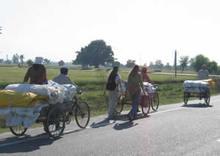 bikecarts