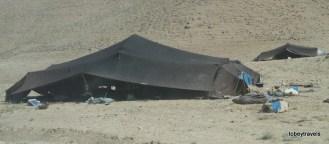 The Road to Herat Kuchi Caravan