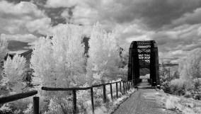 Bridge-8167