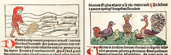 Dialogus-creaturarum-moralisatus-Sverige-1483-2. a