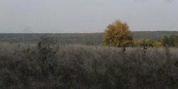 skierbieszowskiparkkrajobrazowy1