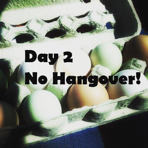 Whole 30 Day 2 No Hangover