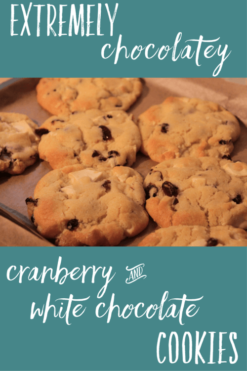 Extremely chocolatey cranberry and white chocolate cookies