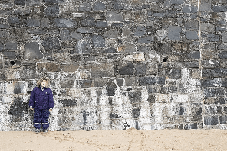 Toby next to the sea wall in Tenby