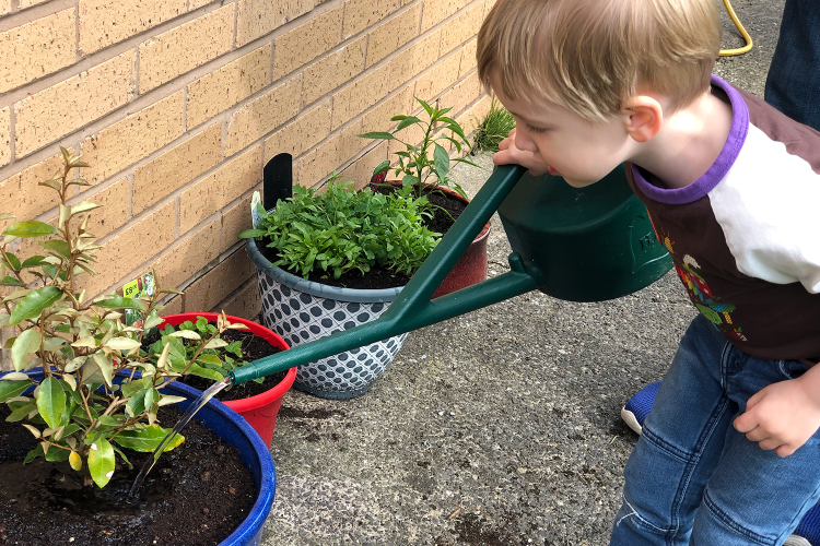 Gabe watering the plants that he planted with Daddy