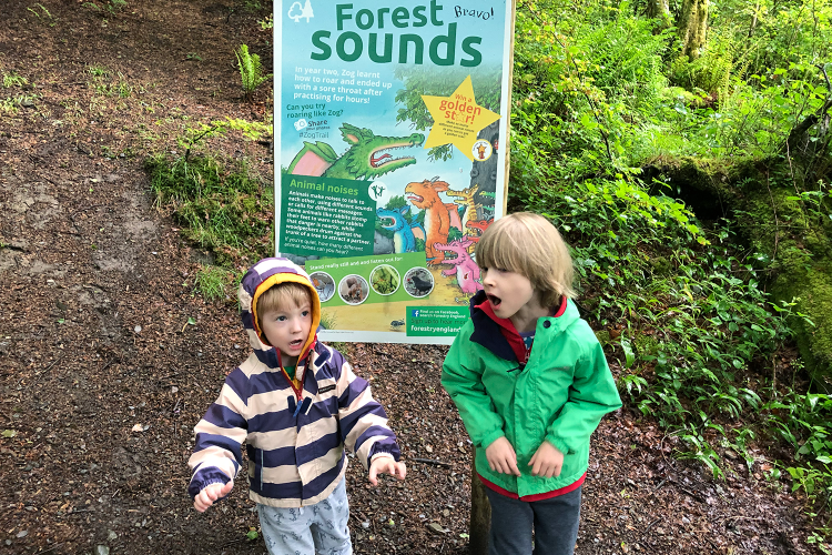 Toby and Gabe on the Zog Trail at Grizedale Forest