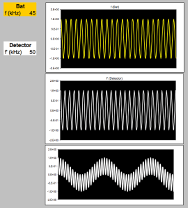 A rough simulation of a heterodyne bat detector I made in Microsoft Excel. The bat signal at 45 kHz (yellow) is multiplied with the detector's internal frequency at 50 kHz (white). The result is a wave of 95 kHz superimposed on a wave of 5 kHz.