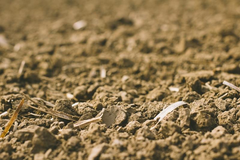 農地売買の条件と注意点