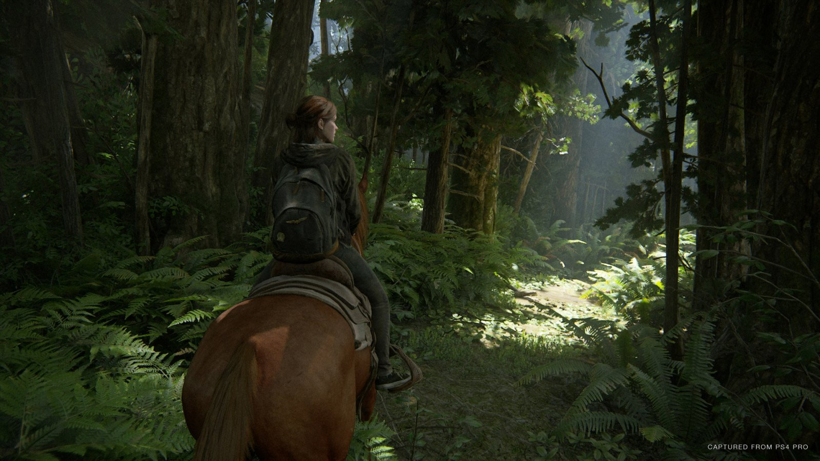 Ellie en The Last of Us Parte II montando a caballo en medio del bosque