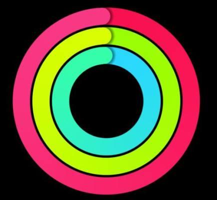 アクティビティの3つの円