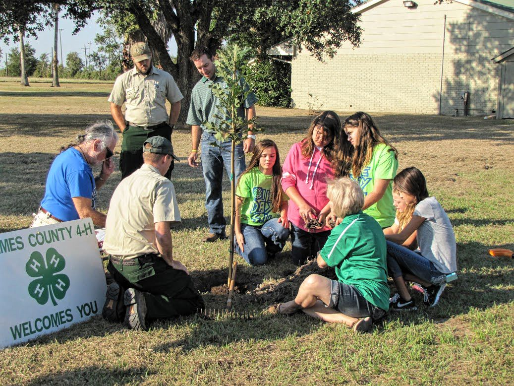Texas Youth Statewide To Participate In One Day 4 H On Oct