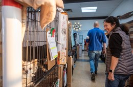 Deborah Summers smiles as she walks past a row of dogs in crates.
