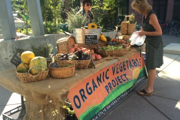 Organic Vegetable Project stand selling produce