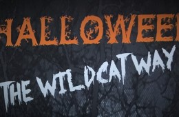 "A graphic stating ""Halloween The Wildcat Way."""