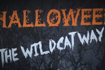 """A graphic stating """"Halloween The Wildcat Way."""""""