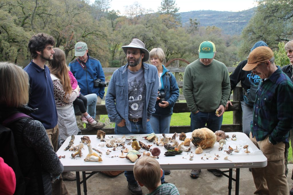 John Aull stands in front of a table of edible and nonedible mushrooms.