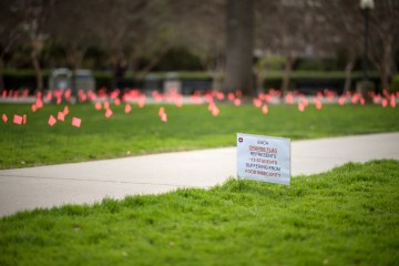 """A field filled with orange flags reading """"Each orange flag represents 15 students suffering from food insecurity."""""""