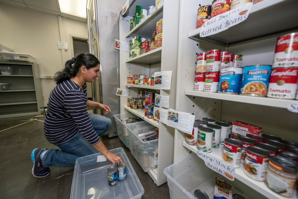 Inderpal Bajwa stocks the shelves of the Hungry Wildcat Food Pantry full with donations.