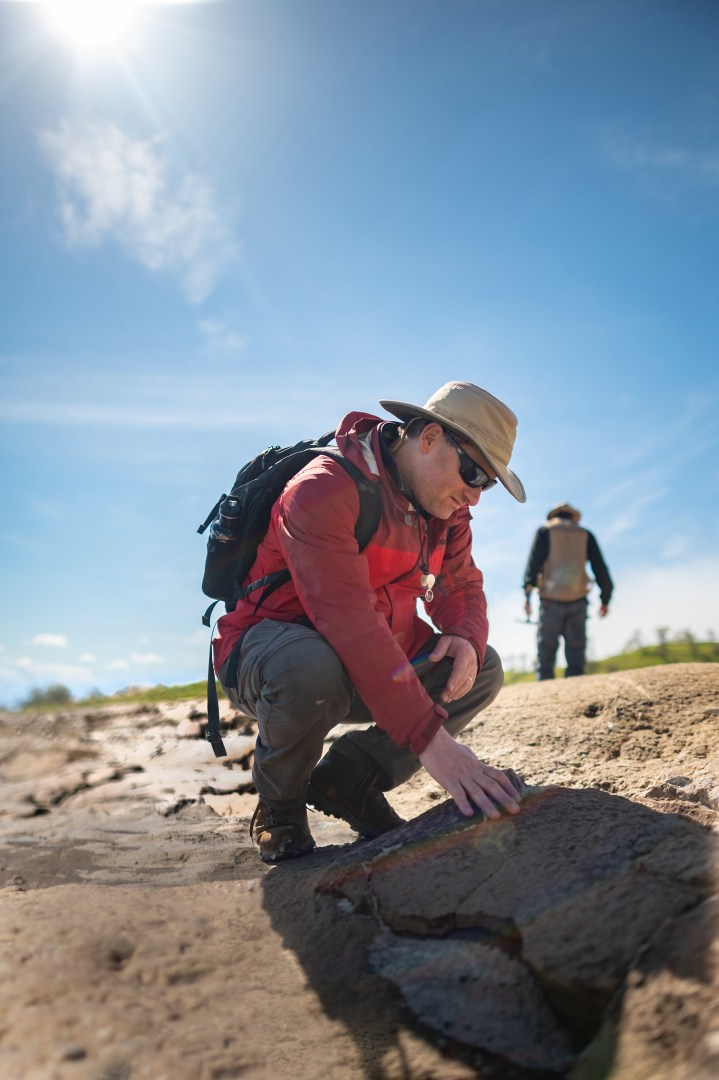 Todd Greene crouches down and examines rocks at the fossil site.