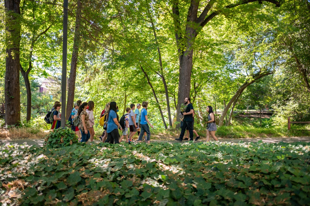 Thee TEK fellows lead a group of elementary school children through campus.
