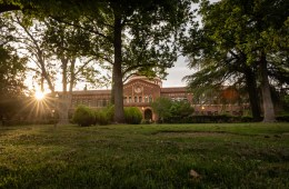 The late-afternoon sun peeks through branches and leaves in an academic setting.