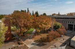 An aerial view of campus shows trees turning color in fall as students walk on campus.