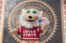 "A plush Willie the Wildcat holds out an ""I Voted"" sticker in front of the university seal."