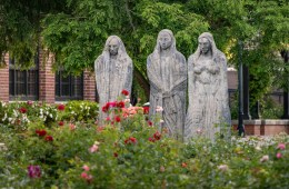 Three stone statues stand amongst rose bushes