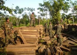 Armed Men Entering Nicaragua from Honduras for Illegal Logging