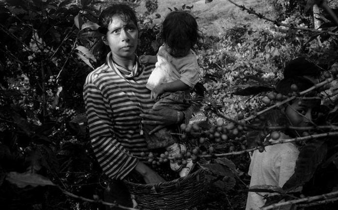 Corn Provides Life in Nicaragua