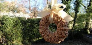 Bird seed wreath hanging from tree