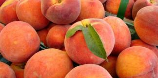 Peaches for sale at fruit stand