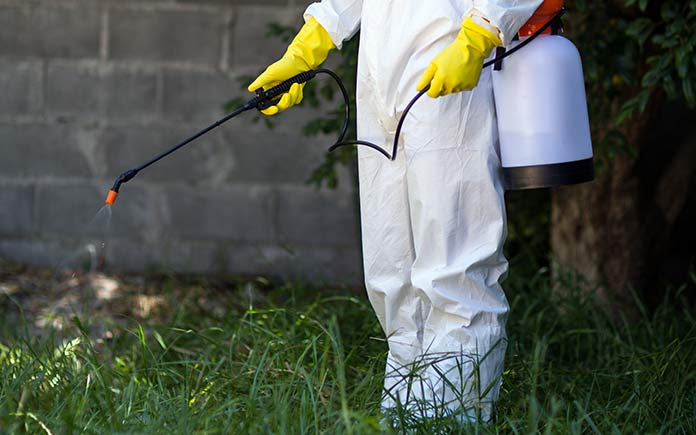 Spraying termites with pest control on the ground