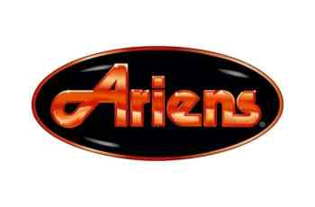 Ariens plans to hire 250 at job event to handle growing demand 17
