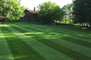 How To Stripe Your Lawn 2