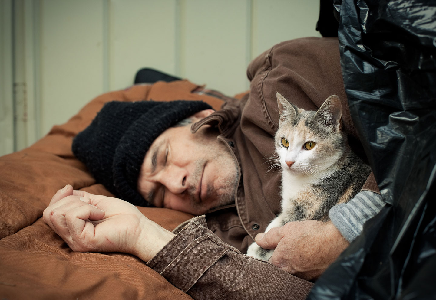 Can The Veterinary Community Help Homeless People Take
