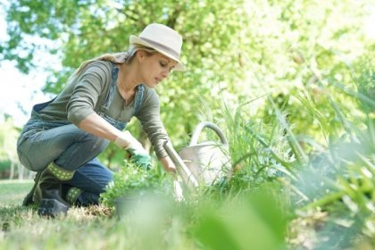How to Start a Vegetable Garden, No Matter the Size of Your Home